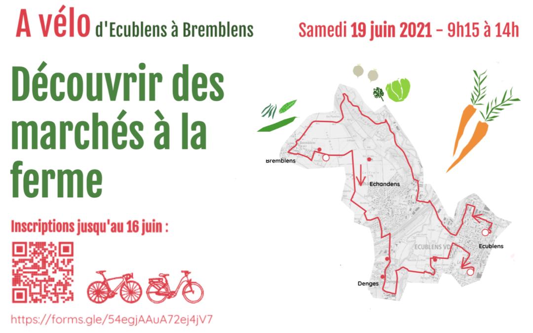Découvrir des marchés à la ferme à vélo – 19 juin 2021